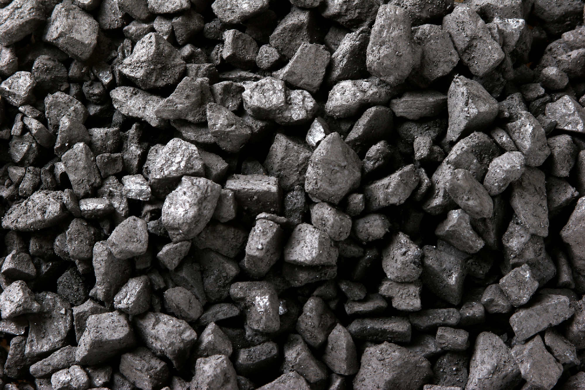 bharat coking coal ltd vs m s Decisions of this court in bharat coking coal limited vs annapurna construction (2008) 6 scc 732 and state of west bengal and ors vs associated.